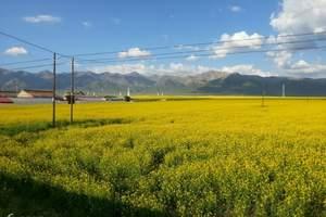 【甘宁青大环线】-宁夏+河西走廊+青海醉美之旅10日游