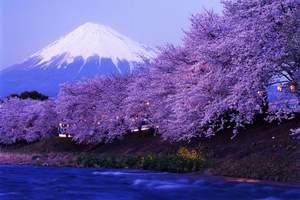 春节去日本好玩吗 青岛到日本双乐园本州全景7日游