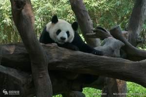 唐山到北京动物园、海洋馆一日