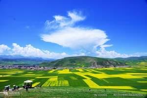 祁连、青海湖、茶卡盐湖3日游(跟团游)