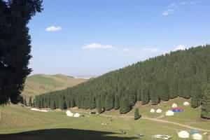 新疆乌鲁木齐到南山别致汽车一日游【乌鲁木齐周边游】