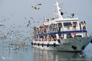 蓬莱旅游线路报价—泰安到蓬莱、长岛、万鸟岛纯玩大巴3日游