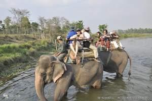 CZ航空肯尼亚8日跟团游_成都肯尼亚马赛马拉看真正的动物世界