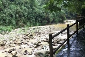 黑山谷旅游 重庆周边二日游 重庆周边避暑的地方 黑山谷二日游