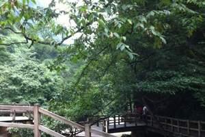 重庆旅游必去景点_重庆一日游热点景点_黑山谷一日游