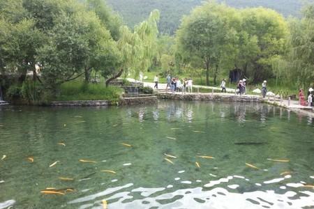 泰安冬季去哪里旅游好 到昆明大理、丽江、西双版纳遇美云南八天