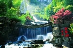 青岛旅行社_青岛出发去长沙韶山凤凰张家界金鞭溪黄龙洞六日游