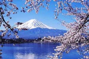 暑假带孩子上哪比较好 日本迪斯尼富士急双乐园双温泉开心6日
