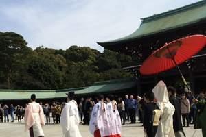 去日本旅游注意事项_郑州去日本旅游团_郑州到日本高端体验六日