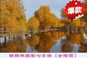 郑州去看胡杨林旅游团_郑州到额济纳旗胡杨林7日游