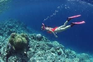 海南醉美海岛双飞5日游_南宁到海南亚龙湾旅游_海南旅游景点