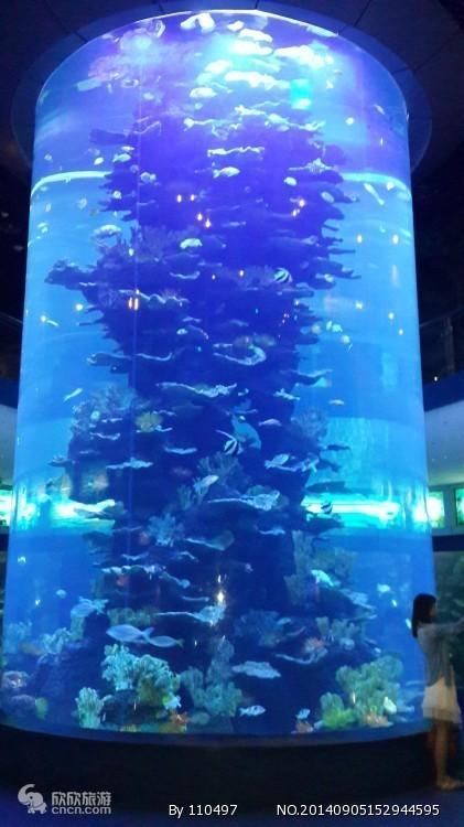哪的海好看?日照、珲春黄金海岸视频青岛游v视频四日汽车图片
