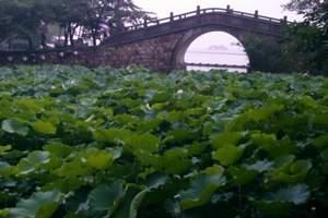 上海出发纯玩-天目湖御水温泉、天目湖山水园1晚2日跟团游