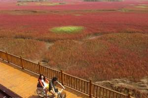 2018十月主推线路_大连到盘锦红海滩0自费0购一日游