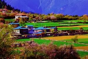 成都去稻城亚丁川藏波密 林芝 拉萨布达拉宫探秘11天 藏羌行