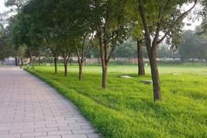 5L:北京五天奢华纯玩团(挂五)