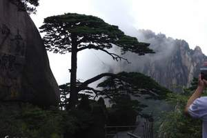 石家庄到千岛湖旅游多少钱《南京、黄山、南浔、乌镇双卧7日游》
