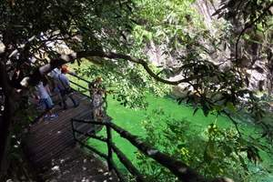 【A1特价】天堂寨、白马大峡谷、南河古民居2日游