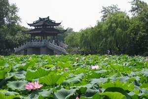 【5月赏花游】青岛到苏州 杭州 西塘+乌镇4日游_纯玩江南行