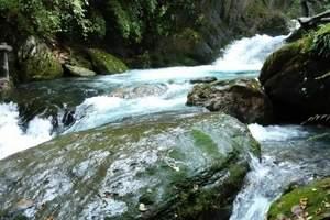 【想游网】神农架自然保护区两日游 神农架两日游 神农顶怎么去