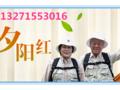 2017年老人夕阳红去哪好_郑州到贵阳昆明西双版纳单飞8日游