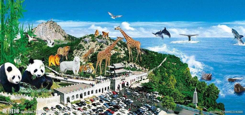 青岛旅行社_国庆节出发去石岛赤山神雕山野生动物园
