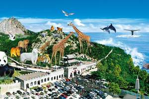 青岛旅行社_青岛出发去石岛赤山神雕山野生动物园休闲二日游