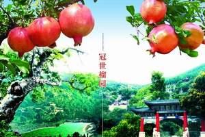 青岛旅行社_青岛出发去台儿庄古城大巴二日游_摘石榴