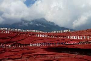 九江出发到云南昆明、丽江、苍山洱海、玉龙雪山双飞一卧六日游