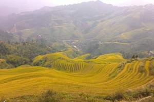 桂林包车旅游费用|桂林租车旅游|桂林、龙脊梯田、阳朔四日游
