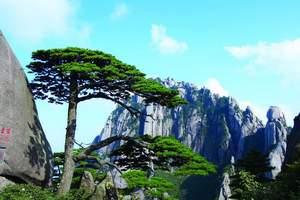 南京杭州上海、黄山、西递屏山、千岛湖、水乡乌镇双飞七日游