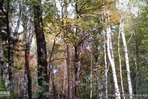 延庆松山森林公园、八达岭野生动物园二日游|延庆爬山二日游路线