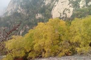 北京去密云旅游 雾灵山观瀑赏花 司马台观光 篝火OK两日游