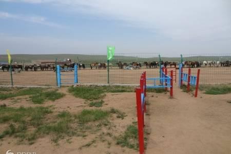 内蒙古大草原、库布其沙漠、成吉思汗陵、呼和浩特4日游