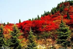 济南红叶谷