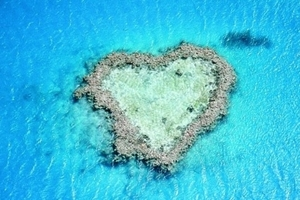 大堡礁在哪_扬州到澳大利亚新西兰黄金海岸墨尔本大堡礁12日游