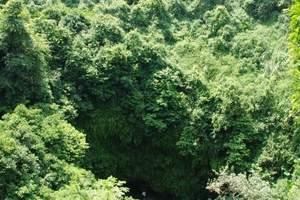 海口周边游·海口旅游团【火山口一日游】+海瑞墓+五公祠
