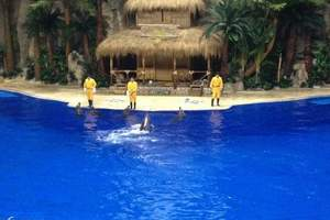 保定到北京旅游 北京动物园海洋馆一日游