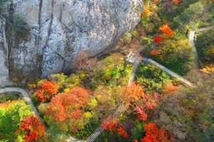 郑州到洛阳老君山二日游-去老君山看红叶-河南周边看红叶哪里好