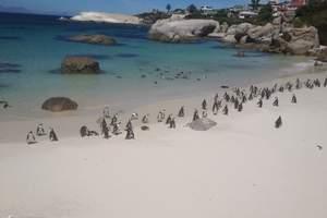 跟团到南非旅游团_郑州到迪拜旅游_郑州到南非+迪拜十一日