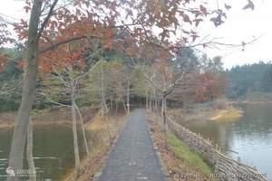 千岛湖一日游(龙川湾线) 杭州出发周边旅游攻略 天天发班