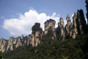 【包团】长沙往返张家界2日游-袁家界-天子山-森林公园