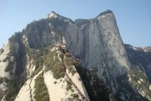 青岛去西安大雁塔,华山兵马俑,延安黄帝陵,壶口瀑布双飞6日游