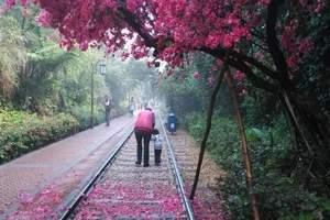 【妇女节线路】广元发团到苍溪梨博园一日游_广元一日游去哪里