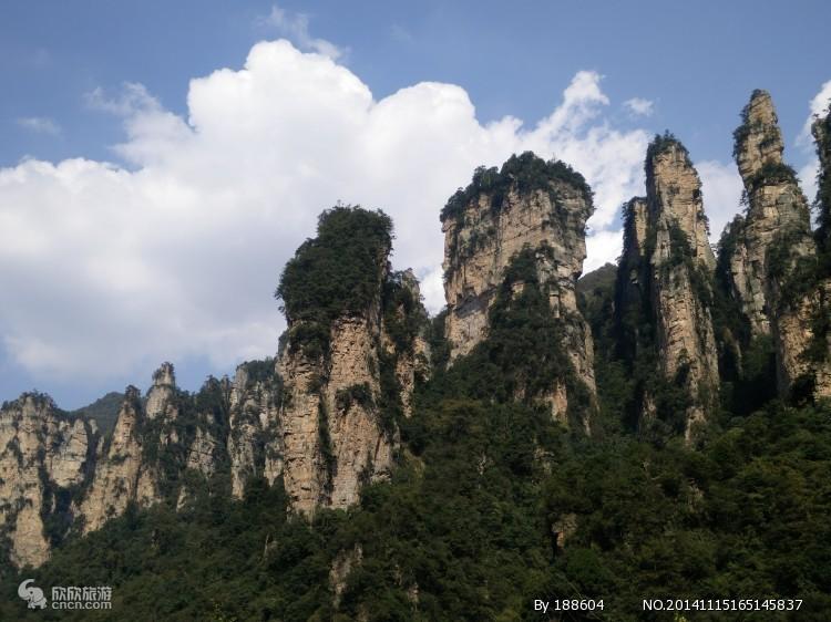 张家界国家森林公园图片