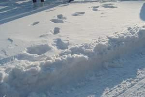 哈尔滨、亚布力滑雪、雪乡农家乐双飞5日游