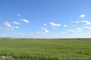 坝上印象B承德避暑山庄、乌兰布统草原、古北水镇双高纯玩5日游