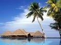 春节旅游青岛到巴厘岛旅游推荐 国际四星酒店 巴厘岛经典7日游