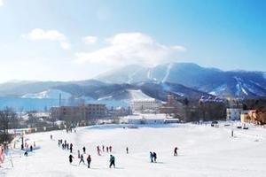 春节去雪乡旅游费用高吗?冰城哈尔滨、亚布力、雪乡双飞5日游