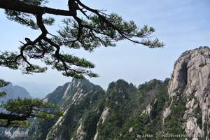 广元到黄山、西递、宏村双飞4日游|广元前往黄山自驾旅游攻略